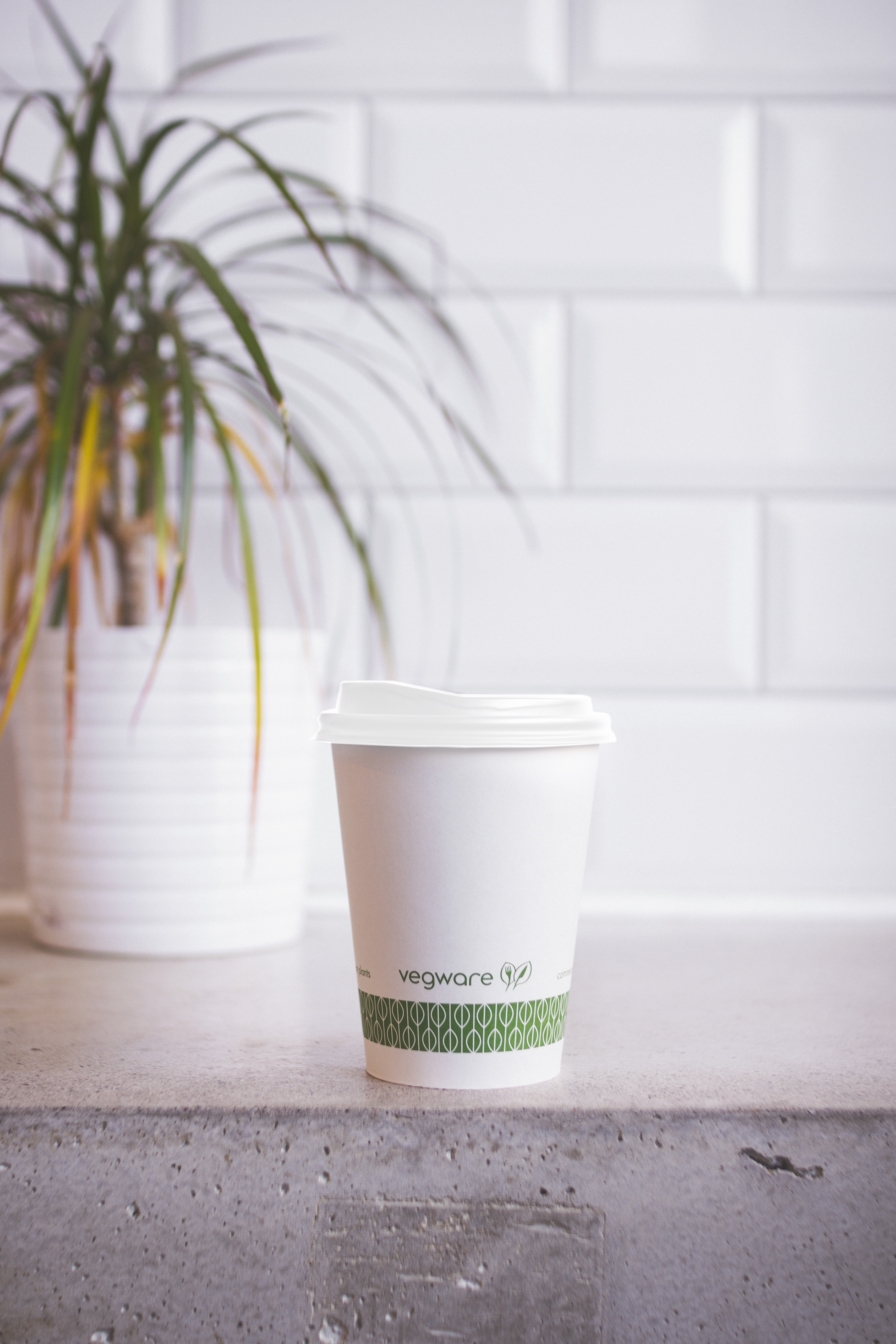 8 oz Hot Cup, Material: PLA lined paper, Color: White with Green Print, Compostable, 1000/cs